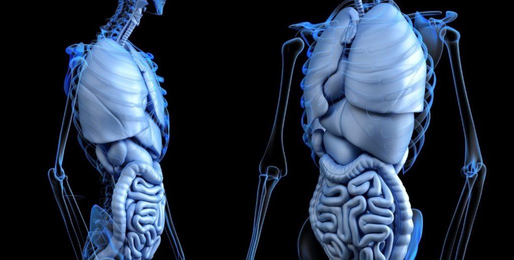 Un nouveau dispositif médical basé sur l'intelligence artificielle actif dans le dépistage du cancer du côlon